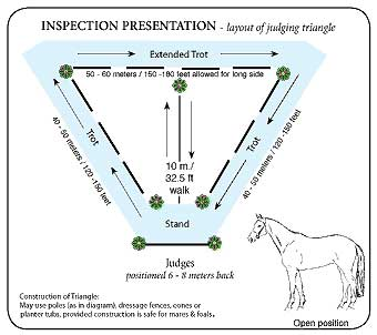 Inspection_diagram